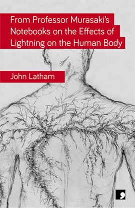 From Professor Murasaki's notebooks on the effects of lightning on the human body by John Latham