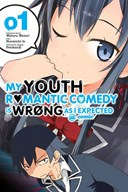 My youth romantic comedy is wrong as I expected. Vol. 1