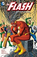 The Flash by Geoff Johns. Book two
