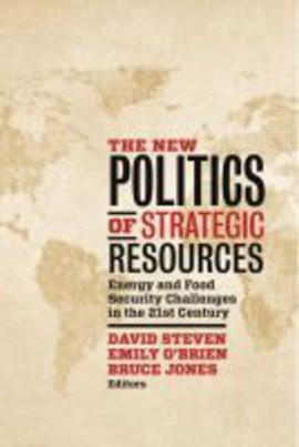 The new politics of strategic resources by David Steven