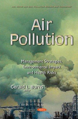 Air pollution by Gerald L Burns