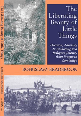 Liberating Beaty of Little Things by Bohuslava Bradbrook