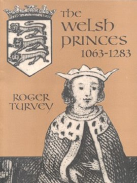 The Welsh princes by Roger K Turvey