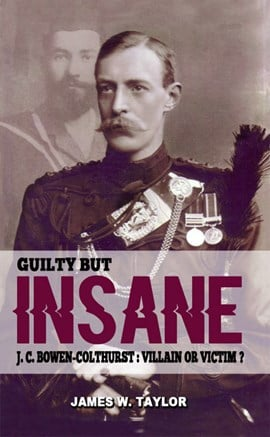 Guilty but insane by James W. Taylor