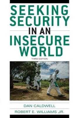 Seeking security in an insecure world by Dan Caldwell