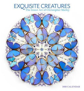 Marley/Exquisite Creatures 2018 Wall Calendar by
