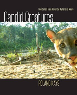 Candid creatures by Roland Kays