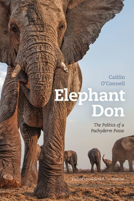 Elephant Don by Caitlin O'Connell