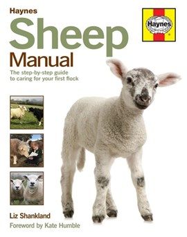 Haynes sheep manual by Liz Shankland