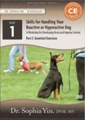 Skills for Handling Your Reactive or Hyperactive Dog