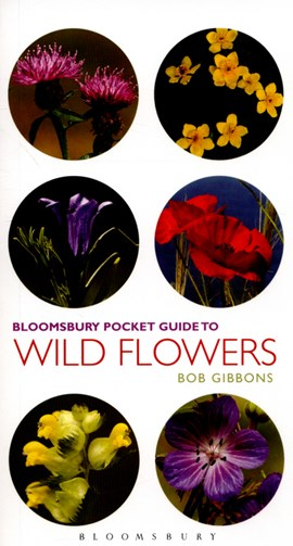 Pocket guide to wild flowers by Bob Gibbons