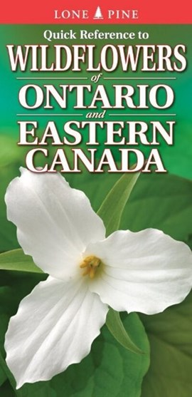 Quick Reference to Wildflowers of Ontario and Eastern Canada by Krista Kagume