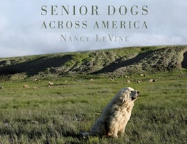 Senior dogs across America by Nancy LeVine