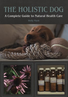 The holistic dog by Holly Mash