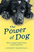 The power of dog