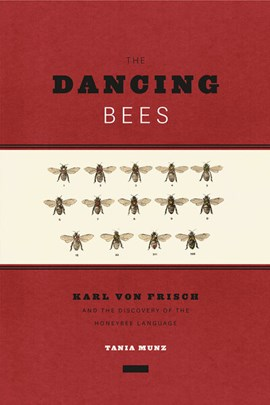 The Dancing Bees by Tania Munz
