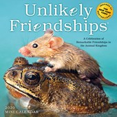 Unlikely Friendships Mini Wall Calendar 2020