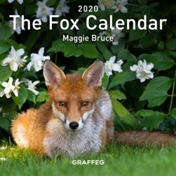 Fox Calendar 2020, The by Maggie Bruce