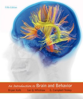 An introduction to brain and behavior by Bryan Kolb