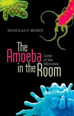 The amoeba in the room by Nicholas P. Money