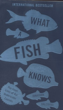 What a fish knows by Jonathan Balcombe