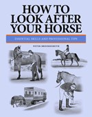 How to look after your horse