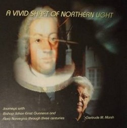 Vivid Shaft of Northern Light by G M Marsh