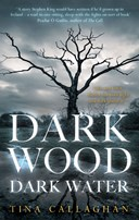 Dark wood, dark water