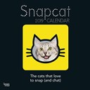 Snap Cat 2019 Square Wall Calendar