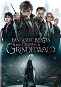 FANTASTIC BEASTS AND THE CRIMES OF GRINDELWALD DVD
