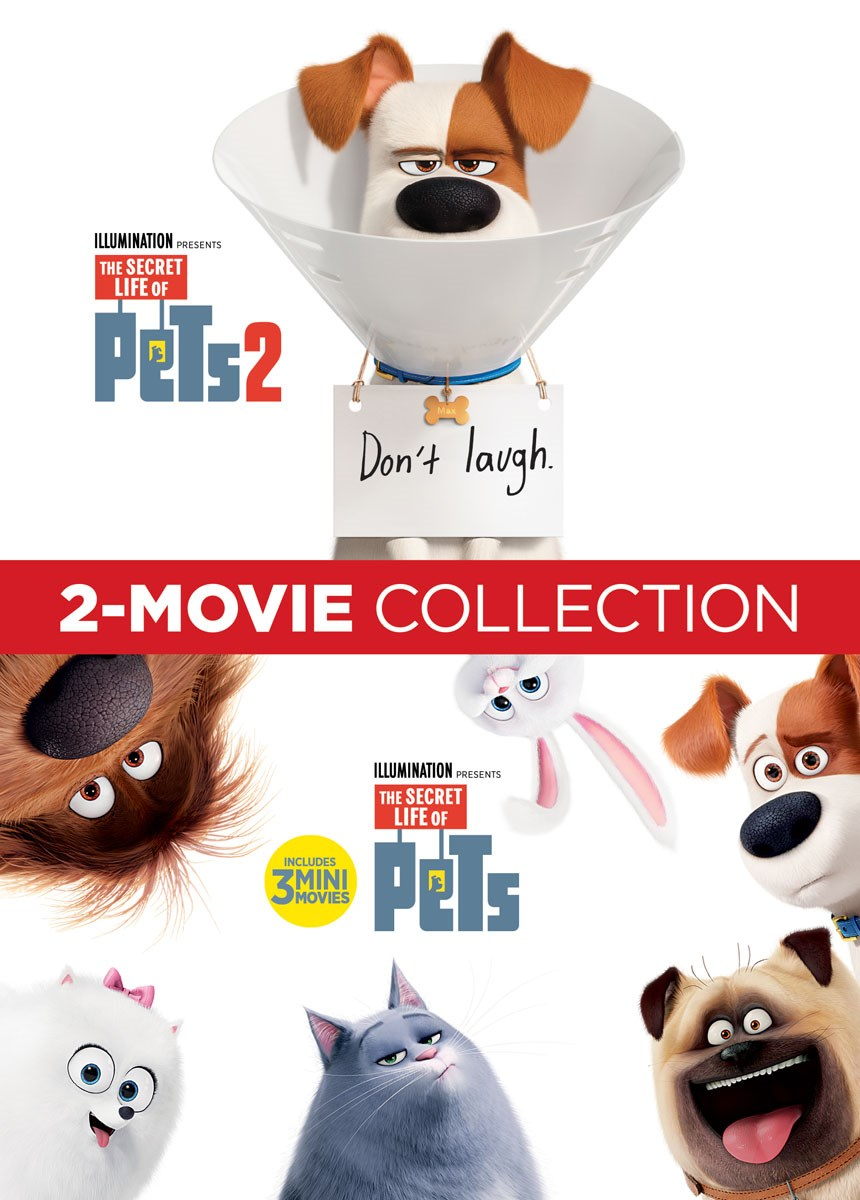 SECRET LIFE OF PETS Pack of 10 kids children birthday party INVITATIONS